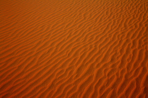 Doha_Desert