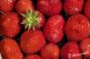strawberry11.jpg