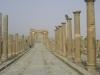 Timgad_051.jpg